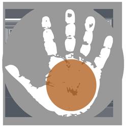 quiromancia Lectura de la palma de la mano para Tauro